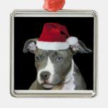 Perrito azul del pitbull del navidad adorno navideño cuadrado de metal