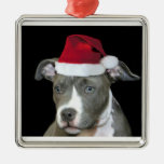 Perrito azul del pitbull del navidad adorno cuadrado plateado