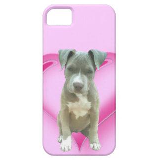Perrito azul del pitbull iPhone 5 carcasas