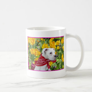 Perrito blanco del boxeador en taza de los