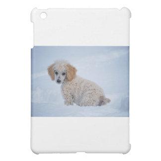 Perrito blanco precioso del caniche en nieve