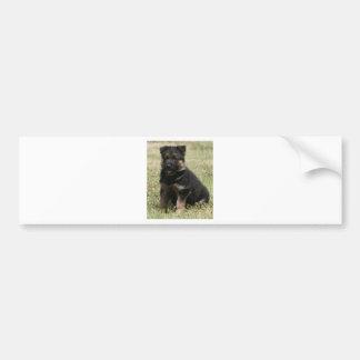 """Perrito """"Caitie """" alemán del pastor Etiqueta De Parachoque"""
