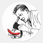 ¿Perrito caliente del vintage del kitsch cuál está Pegatina Redonda