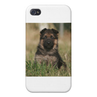 "Perrito ""chapoteo "" alemán del pastor iPhone 4 protectores"