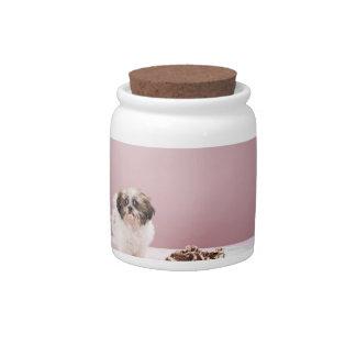 Perrito con la torta en piso jarra para caramelo