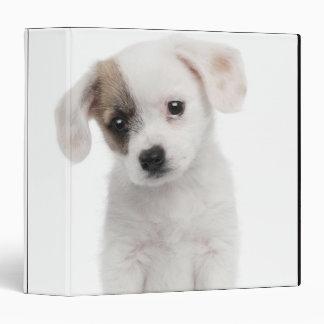 "Perrito cruzado de la raza (2 meses) carpeta 1 1/2"""