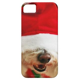 Perrito de Bichon Frise que lleva el traje de iPhone 5 Funda