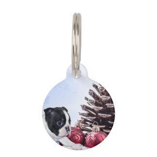 Perrito de Boston Terrier del navidad