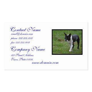 Perrito de Boston Terrier Plantillas De Tarjetas De Visita
