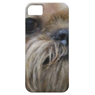 Perrito de Bruselas Griffon iPhone 5 Case-Mate Cárcasas