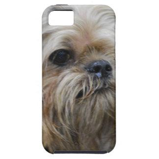 Perrito de Bruselas Griffon iPhone 5 Funda