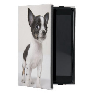 Perrito de Chihuhua que se coloca en la tela blanc iPad Mini Fundas