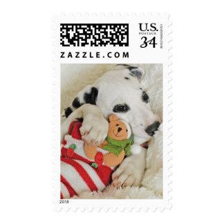 Perrito de Dalmation con el almacenamiento del Sello Postal