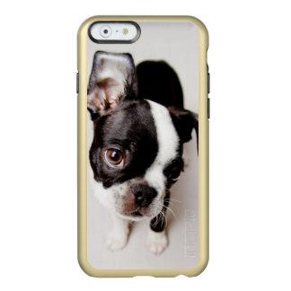 Perrito de Edison Boston Terrier Funda Para iPhone 6 Plus Incipio Feather Shine