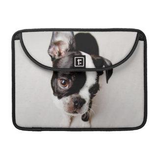 Perrito de Edison Boston Terrier Funda Para Macbook Pro