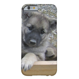 Perrito de Elkhound del noruego Funda Para iPhone 6 Barely There