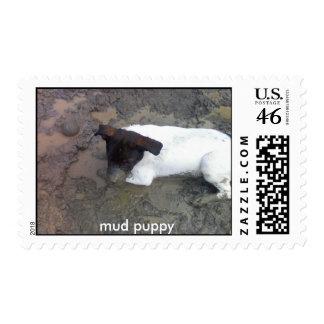 perrito de fango