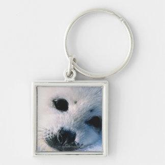 Perrito de foca de Groenlandia 2 Llaveros Personalizados