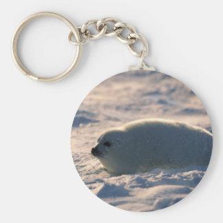 Perrito de foca de Groenlandia en nieve Llavero