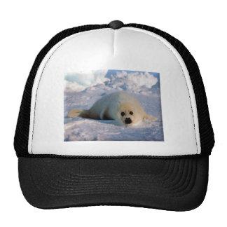 Perrito de foca de Groenlandia Gorros Bordados