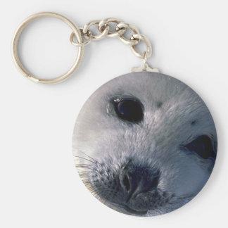 Perrito de foca de Groenlandia Llaveros