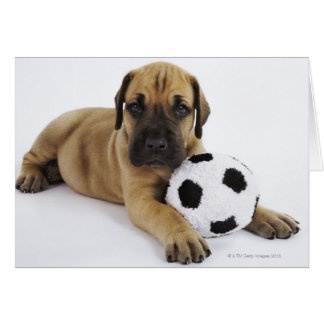 Perrito de great dane con el balón de fútbol del j tarjeta de felicitación
