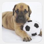 Perrito de great dane con el balón de fútbol del pegatina cuadrada