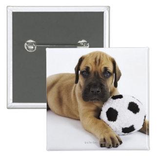 Perrito de great dane con el balón de fútbol del pin cuadrado