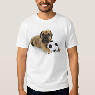 Perrito de great dane con el balón de fútbol del remera