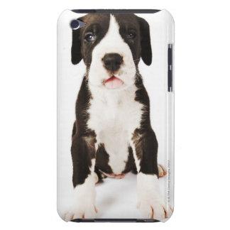 Perrito de great dane del Harlequin en el fondo bl Case-Mate iPod Touch Protector