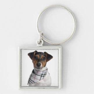 Perrito de Jack Russell Terrier (4 meses) Llaveros Personalizados