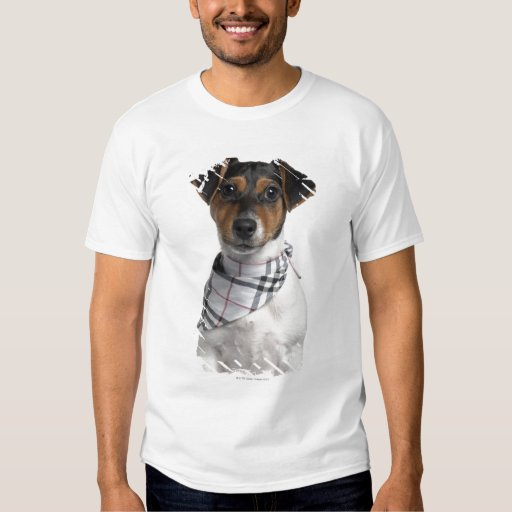 Perrito de Jack Russell Terrier (4 meses) Playera