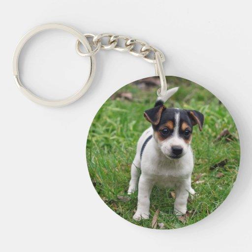 Perrito de Jack Russell Terrier en la hierba Llavero Redondo Acrílico A Doble Cara