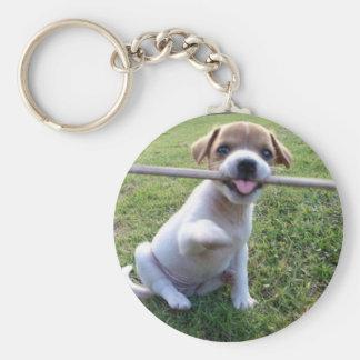 Perrito de Jack Russell Terrier Llavero Redondo Tipo Pin