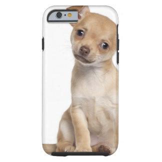 Perrito de la chihuahua (2 meses) funda resistente iPhone 6