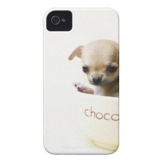 Perrito de la chihuahua en el cuenco (cosechado) Case-Mate iPhone 4 protectores
