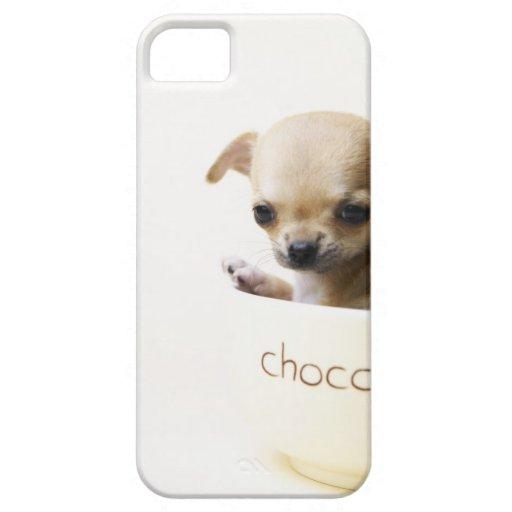 Perrito de la chihuahua en el cuenco (cosechado) iPhone 5 Case-Mate protector