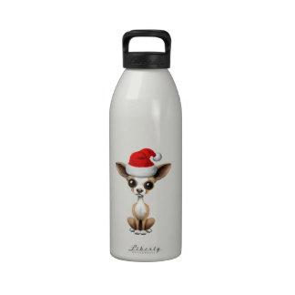 Perrito de la chihuahua que lleva un gorra de Sant Botella De Agua