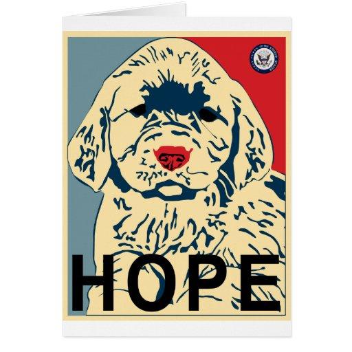 Perrito de la esperanza tarjeta de felicitación