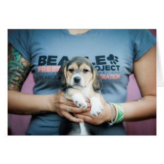 Perrito de la libertad del beagle en la camiseta tarjeta de felicitación