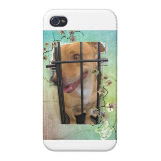 Perrito de la libra iPhone 4 protector