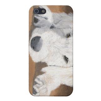 Perrito de Labradoodle iPhone 5 Carcasa