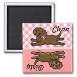 Perrito de Labrador del chocolate limpio/sucio