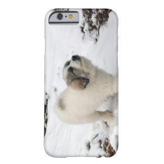 Perrito de los grandes Pirineos Funda De iPhone 6 Barely There