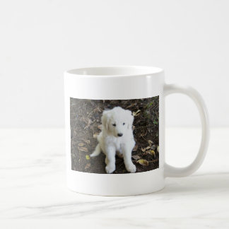 Perrito de los grandes Pirineos subió Taza De Café