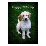 Perrito de oro del Doodle del feliz cumpleaños Tarjetón