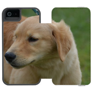 Perrito de oro dulce funda billetera para iPhone 5 watson