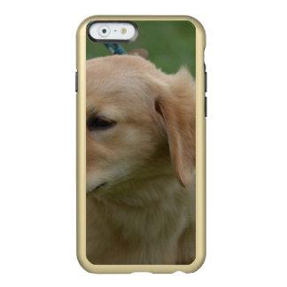Perrito de oro dulce funda para iPhone 6 plus incipio feather shine