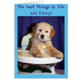 Perrito de oro en el Highchair - nuevo mascota Tarjeta De Felicitación