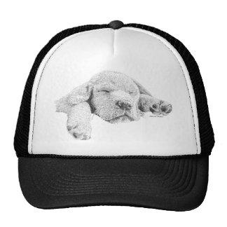 Perrito de oro gorra